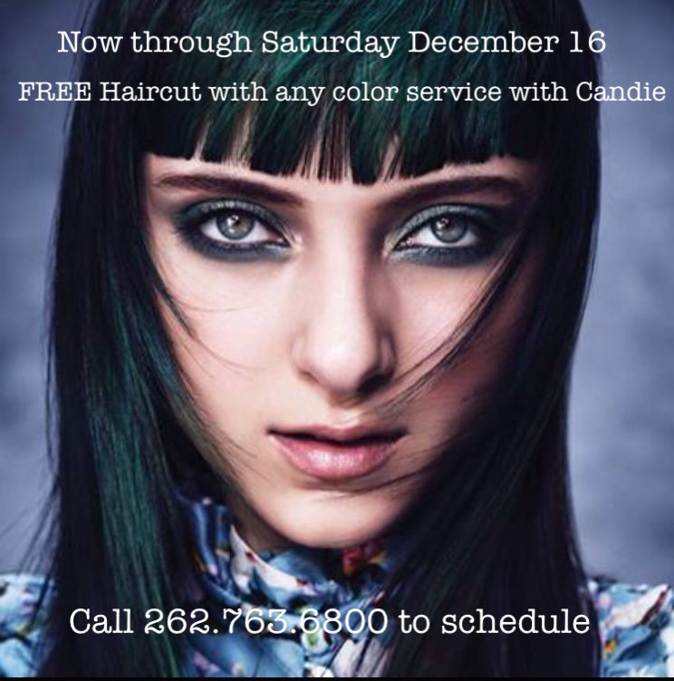 Free Hair Cut With Any Color Service Platinum Salon Spa